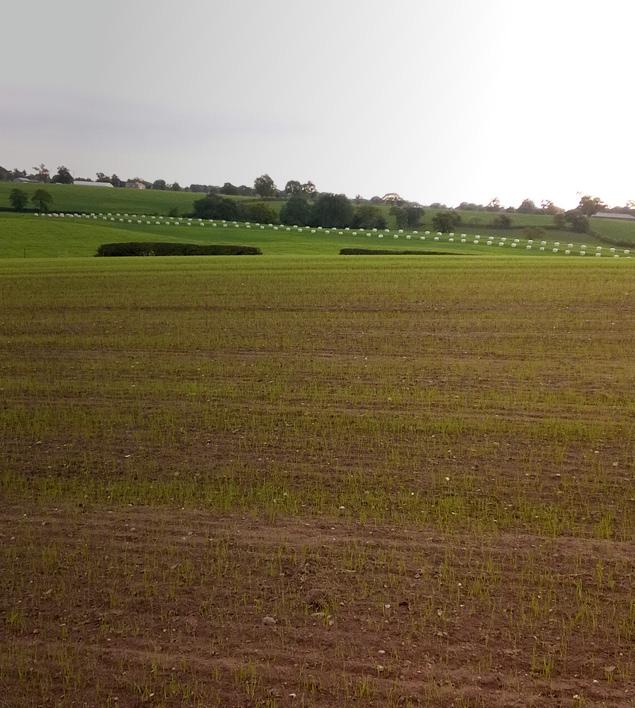 farming-field